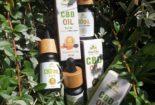 zestaw olejków CBD